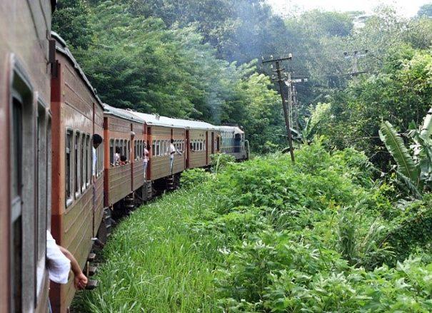 Scenic Train Ride from Peradeniya (Kandy) to Nanu Oya