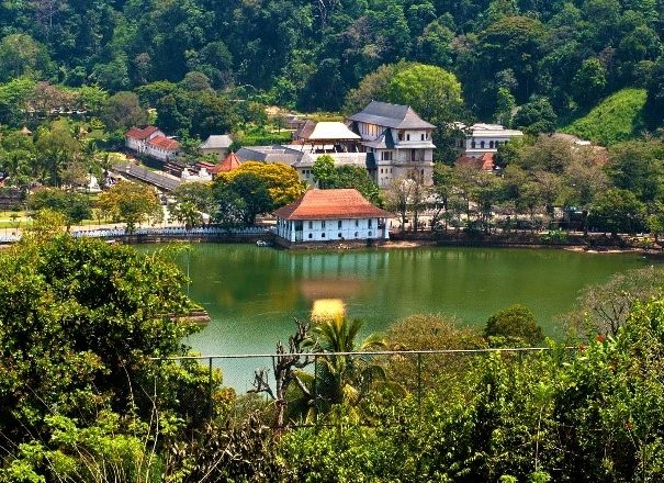 Private day tour to Kandy and Pinnawala from Colombo