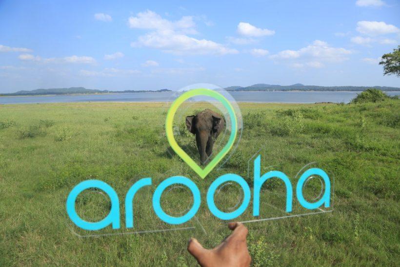 Minneriya National Park Safari – Special Elephant Safari (12)